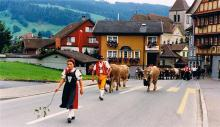 The traditional cuisine of the Swiss regions