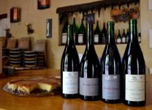 Gourmet wine tour to France
